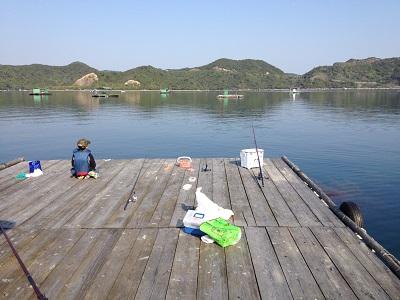 徳島県堂の浦釣り ウチノ海 サヨリ釣り 筏釣り