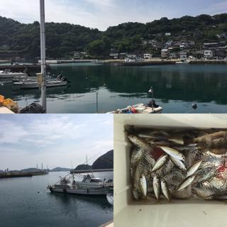 和歌山の釣り場 塩津漁港 サビキ釣り 豆アジ釣り