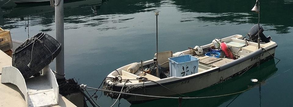阪神間・日本海の釣り