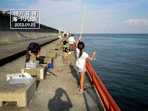 平磯海釣り公園 ファミリーフィッシング サビキ釣り