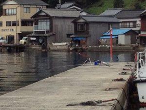 伊根漁港平田 ガシラ メバル 根魚釣り