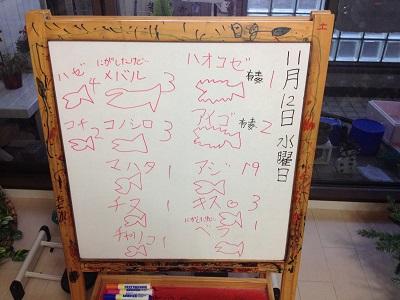 鳥取港釣り 五目釣り