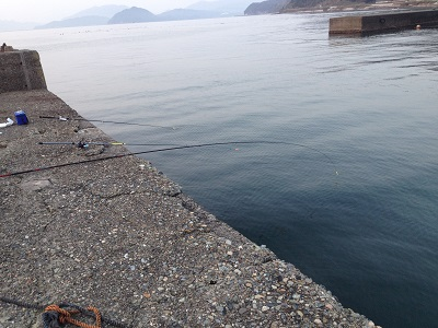 丹後半島 長江漁港釣り 根魚釣り ガシラ釣り メバル釣り