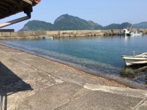 若狭上瀬漁港釣り キス釣り 根魚釣り