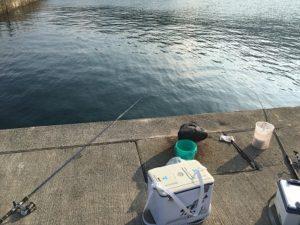 若狭 日引漁港釣り サビキ釣り ファミリーフィッシング