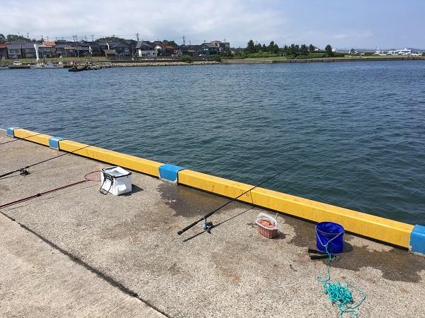 鳥取耐震岸壁 サビキ釣り のませ釣り