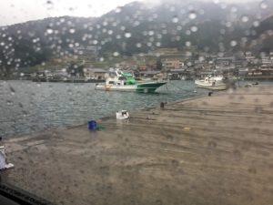 日引漁港 カゴ釣り グレ サンバソウ ウマヅラハゲ 釣り