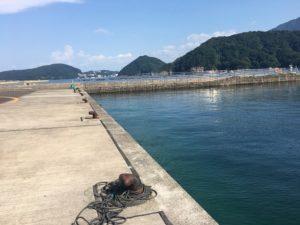 福井 日引漁港 サビキ釣り アコウ釣り (5)