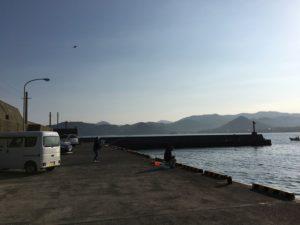 田後港  釣り