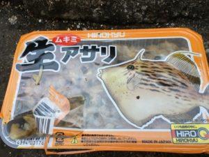 日引漁港 福井釣り カワハギ釣り アサリ