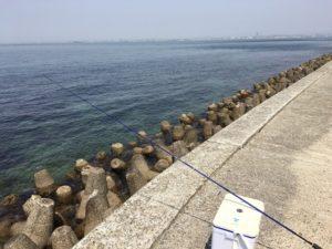 淡路島釣り
