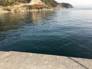 淡路島釣り 炬口漁港