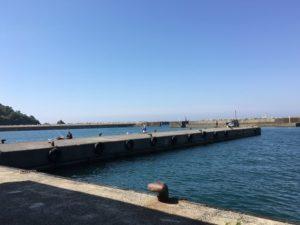 浜坂漁港 サビキ釣り アジ釣り 投げ釣り ネズミコチ
