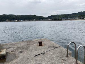 土居港 周防大島 アオリイカ釣り エギング 投げ釣り エギング タイ釣り