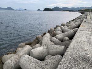 下田港 周防大島 アオリイカ釣り エギング 投げ釣り エギング タイ釣り